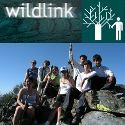 [WildLink Program]