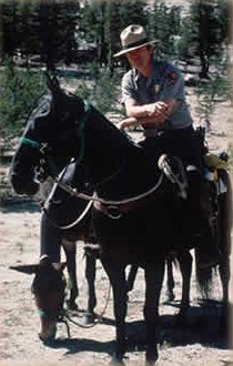 [NPS Ranger on Horse]